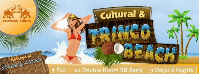 Cultural and Trinco Beach - 09 Days / 08 Nights
