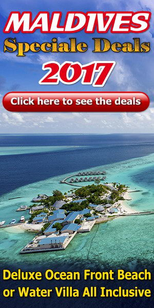 Best Travel Packages In Usa