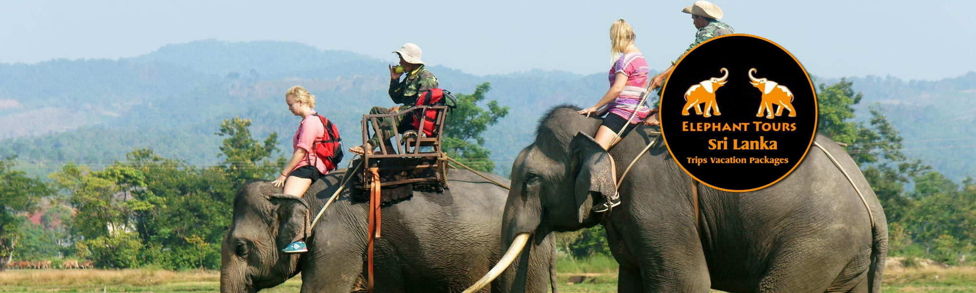 Sri-Lanka-Elephant-Ride