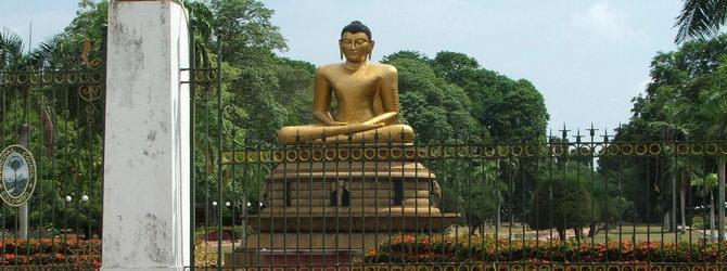 Sri Lanka special tour