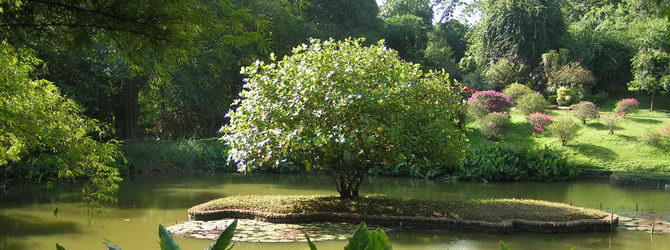 Sri Lanka 005